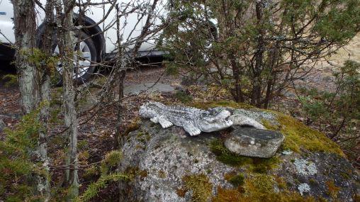 Kiveltä löytyi muitakin köllijöitä