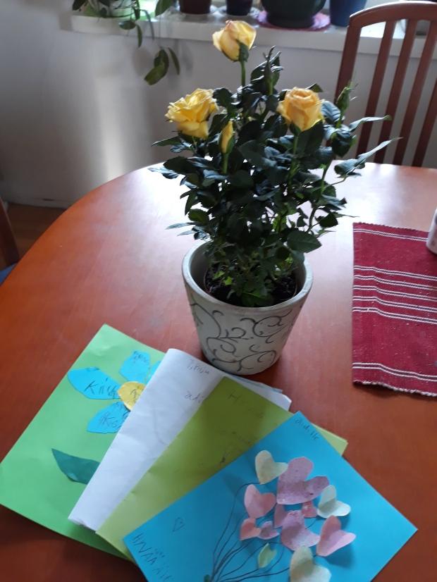 Äitienpäiväruusu ja ihanat kortit